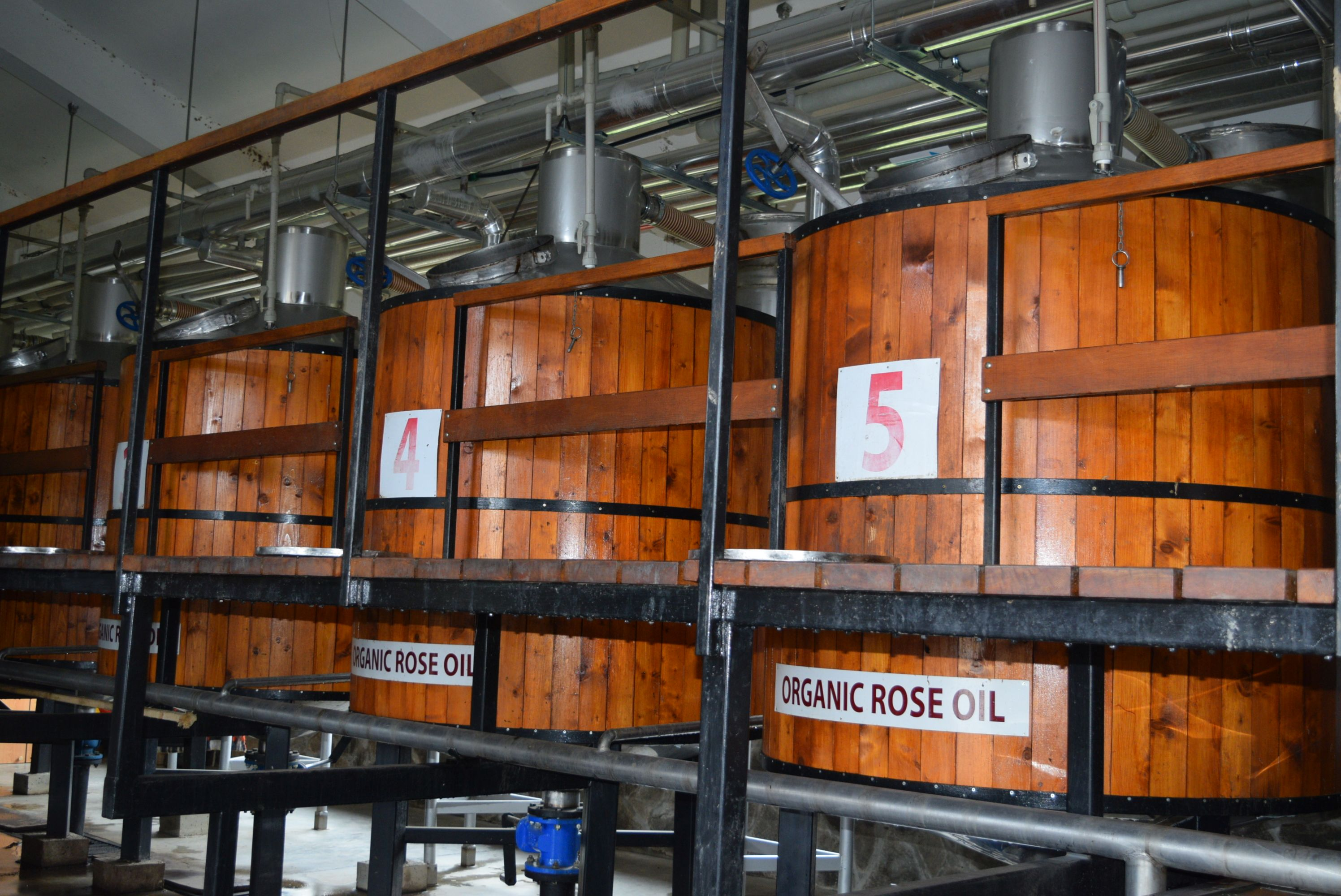 Rose oil production facilities